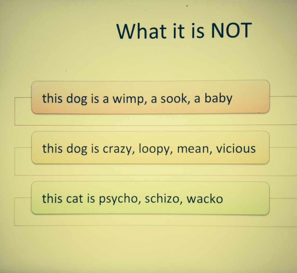 what it is not
